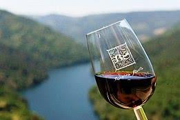 La forma de la copa altera el sabor del vino, según un estudio japonés