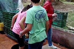 ENOTURISMO CON NIÑOS EN LA RIBEIRA SACRA